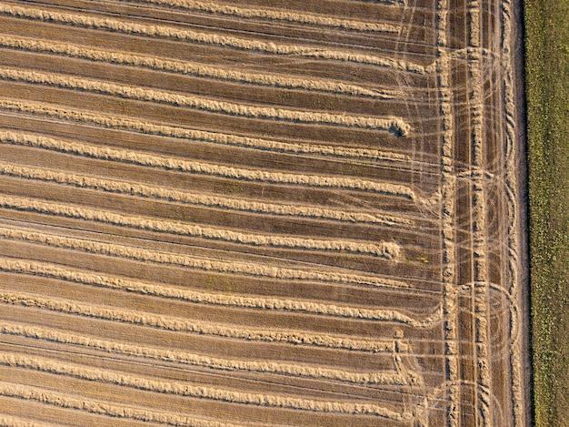 Панорамный снимок летающих дронов на сельскохозяйственное поле после сбора урожая пшеницы. сильные полосы земли после сбора урожая, естественный фон. вид сверху