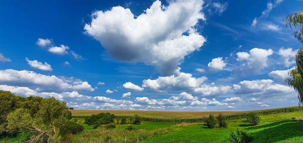 Панорамный пейзаж зеленого луга и голубого неба с облаками