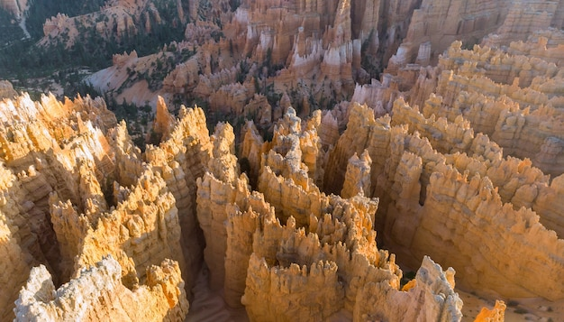 Panoramic landscape, wide format bryce canyon national park, usa,