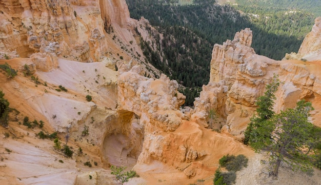 Panoramic landscape, wide format zion canyon national park