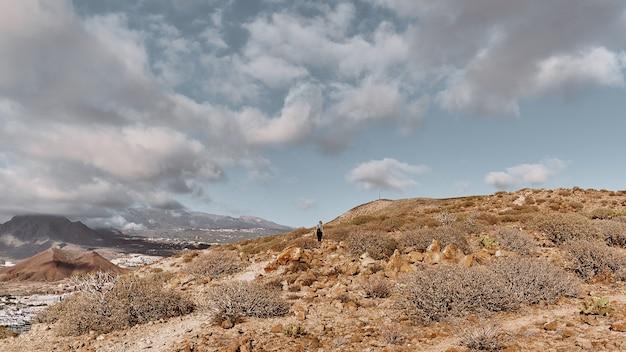 丘の上の女の子とパノラマの風景