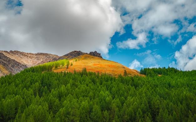 金色の日光の下で岩とパノラマの山の風景。鋭い岩と緑の森と岩山の壁の自然の背景。高い岩山のあるカラフルな日当たりの良い背景。