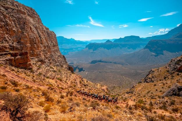 サウスカイバブトレイルヘッドトレッキングのラバの観光客。アリゾナ州グランドキャニオン