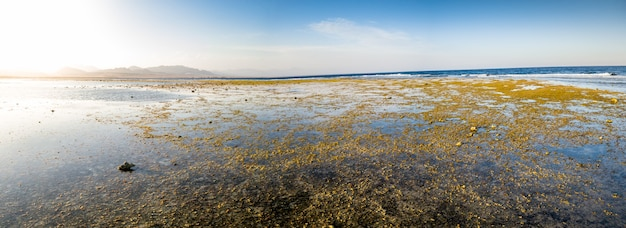Panoramic photo of corals and rocks on the ocean coast. mountains and blue sky on the background