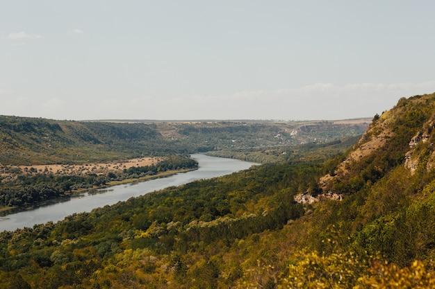川、山、森のパノラマ写真