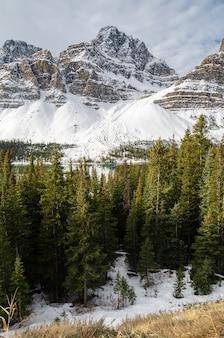 カナダ、アルバータ州、バンフ国立公園のコロンビア氷原パークウェイに沿った冬季のクロウフット氷河のパノラマ風景