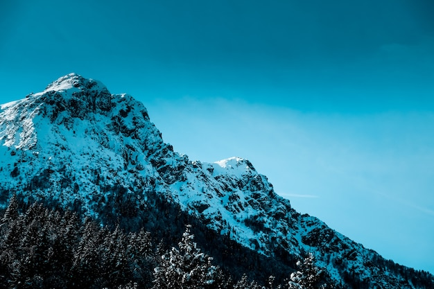 Panoramic shot of snow covered jagged mountain peak with alpine trees at the base of the mountain