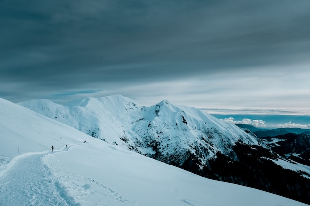 Panoramic shot of snow covered mountain peaks with alpine trees  under cloudy skies