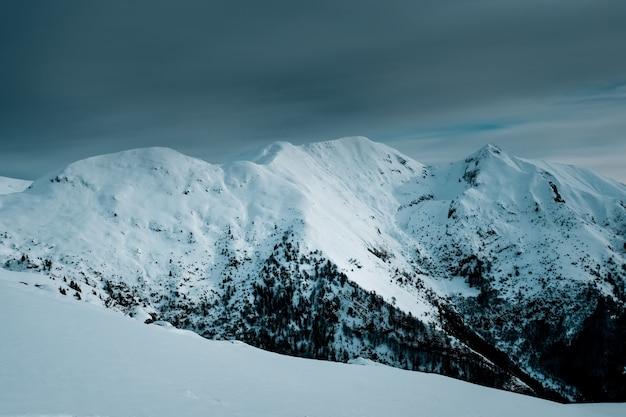 Colpo panoramico di vette innevate con alberi alpini