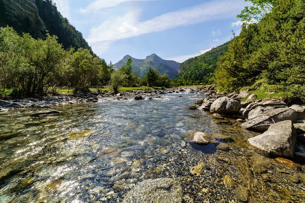 Panoramic valley landscape with crystal clear river, stones, and tall trees in ordesa pirineos. reflections in the water and flashes of the sun.
