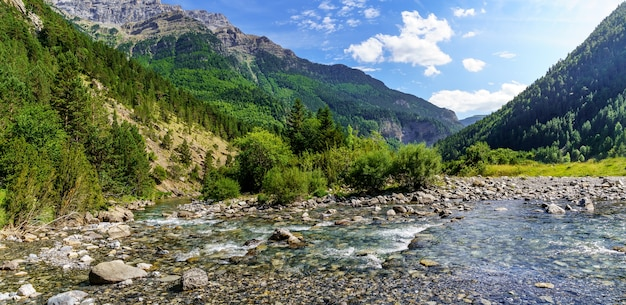 Panoramic valley landscape with crystal clear river, stones, and tall trees in ordesa pirineos. rest and camping area to enjoy free time.