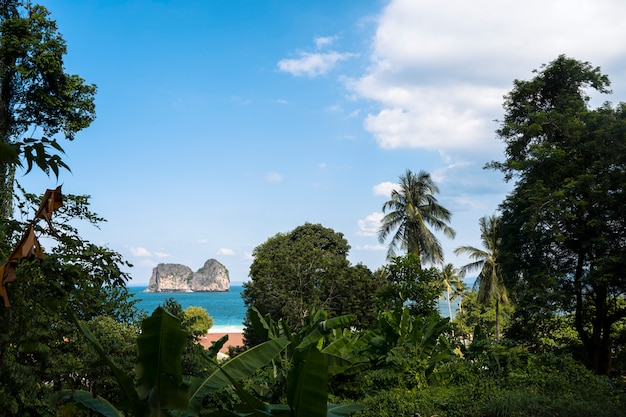Panoramic view of a blue scenery of an exotic beach in thailand andaman sea.