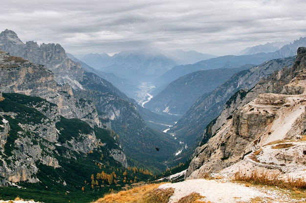 Panoramic view, cinque torri peaks, italy. big eagle flying in mountains