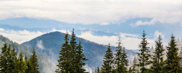 Panoramic view of foggymountains with low clouds