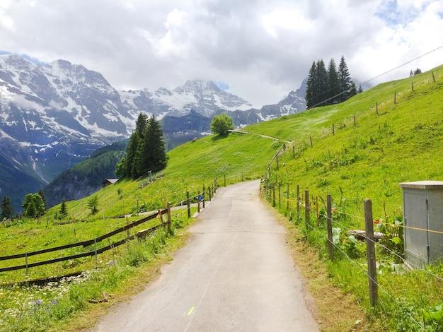 Panoramic view from murren-gimmelwald walking trail, switzerland