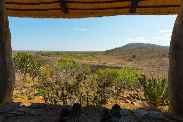 Panoramic view from wooden window in tourist resort in the kruger national park, south africa. relaxing people looking at view, human feet only included.