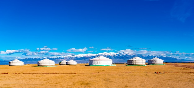 Panoramic view of mongolian ger on a large steppe