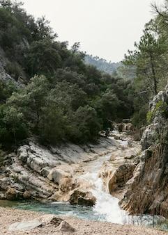 Vista panoramica della natura