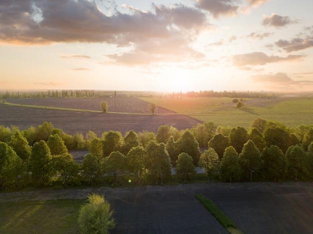 木々に分割された広いフィールドと、日没時と日没時の雲のある空を背景にした田舎道のパノラマビュー。