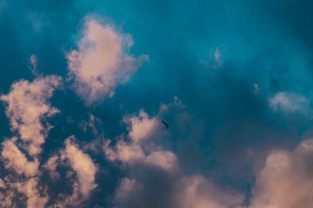 日没時のピンクと紫の空のパノラマビュー。空のパノラマの背景。