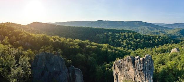 夏の鬱蒼とした森の間に緑の森の木々と大きな岩の岩がある明るい風景のパノラマビュー。野生の森の美しい風景。