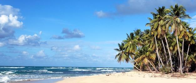 太陽の下でカリブ海のビーチのパノラマビュー