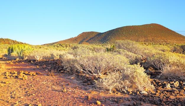 Панорамный вид на пустынную местность на острове тенерифе, канарские острова