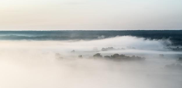 濃い霧に覆われたフィールドのパノラマ ビュー