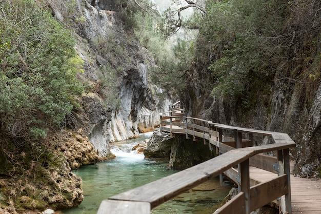 森と川のパノラマビュー