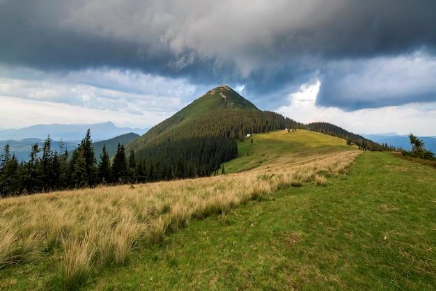 雷雨の前に暗い青い曇り空の下で遠い木質山のふもとに緑の草が茂った谷、松の木、農村の小さな農民の小屋のパノラマビュー。自然の美しさ、観光、旅行。