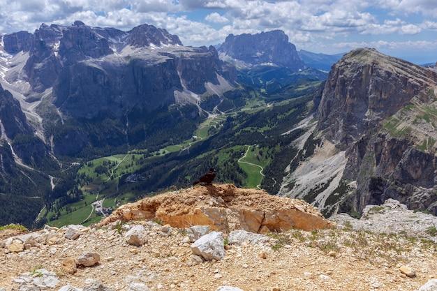 サッソンゲル山の頂上からのイタリアのドロミテのパノラマビュー。