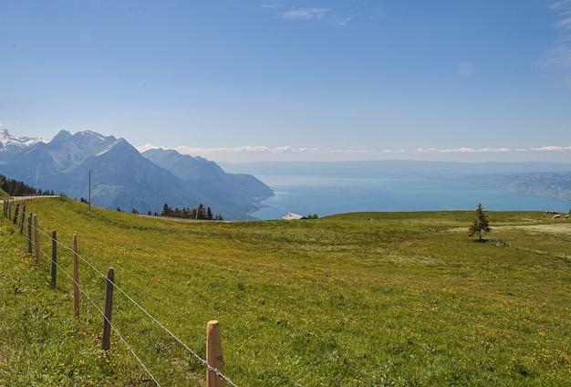 フェンスと緑の草とスイス、ラヴォーのパノラマビュー