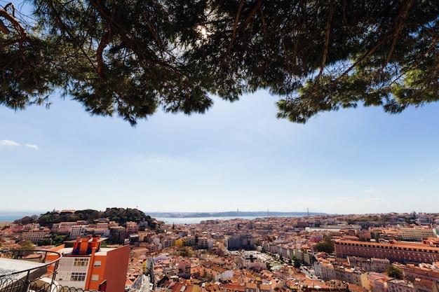 Панорамный вид на лиссабон с лиссабонским замком в дневное время и дерево