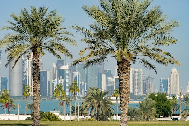 화창한 날 흐린 야자수 카타르를 통해 현대적인 도하 스카이라인의 탁 트인 전망