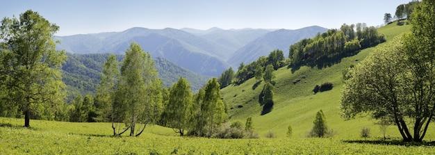 봄 오후에 산의 전경, 숲과 초원의 녹지