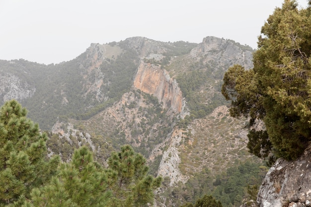 山々のパノラマビュー