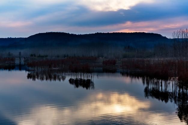 自然公園の川のパノラマビュー