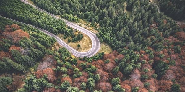 道路の曲がり角のパノラマビュー