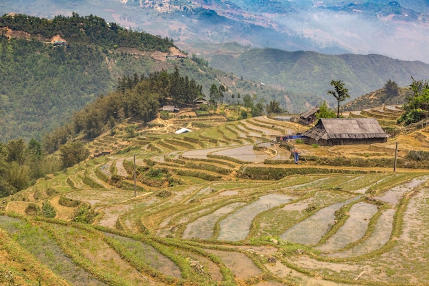 베트남 라오까이 사파에 있는 계단식 논의 탁 트인 전망