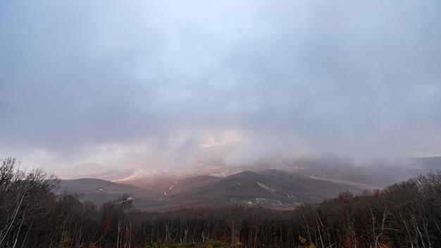 Панорамный вид на голый горный осенний зимний лес