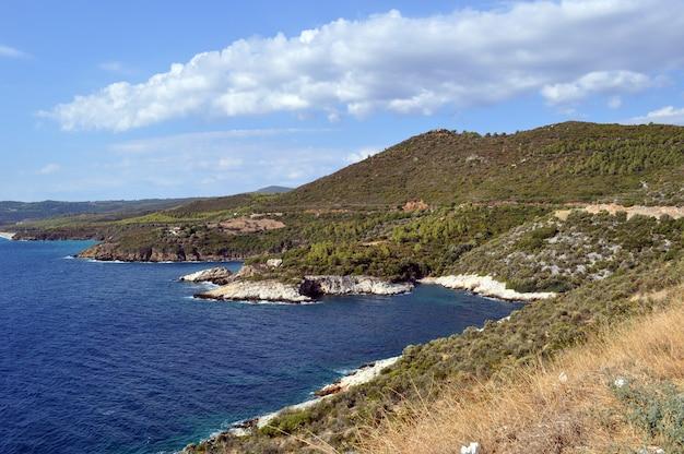 海岸線と低山のパノラマビュー