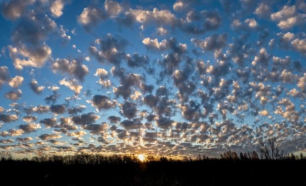 夕焼けとたくさんの小さな精液と夕方の空のパノラマビュー