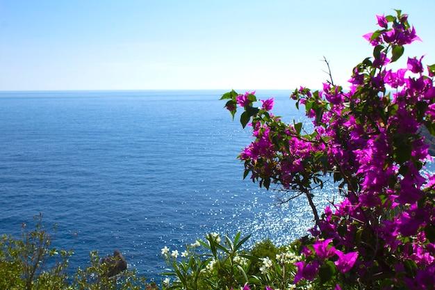 Панорамный вид на остров, море и розовый цветок в солнечный день. корфу. греция.