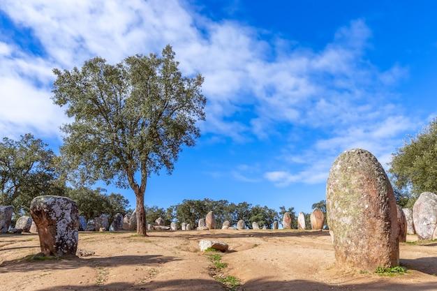 Панорамный вид на мегалитический комплекс альмендрес кромлеш (cromelelique dos almendres) эвора, регион алентежу, португалия