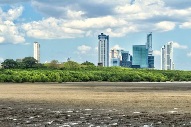 前景に樹木が茂った岩場があるパナマシティの高層ビルのパノラマビュー