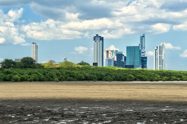Панорамный вид на небоскребы панама-сити с лесистой и скалистой зоной на переднем плане.