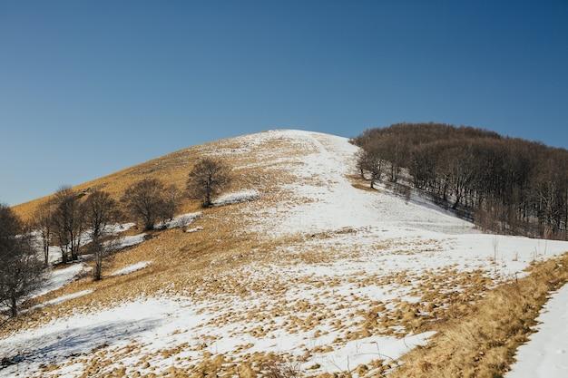 맑고 맑은 겨울 날 푸른 하늘에 눈 덮인 언덕의 전경.
