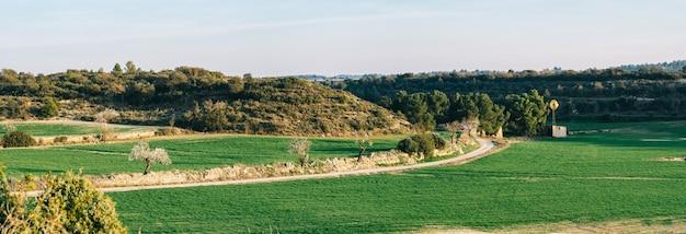 봄에 오두막과 밀 밀밭의 전경