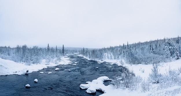 Панорамный вид дикого зимнего снежного северного леса с рекой в полярный день.
