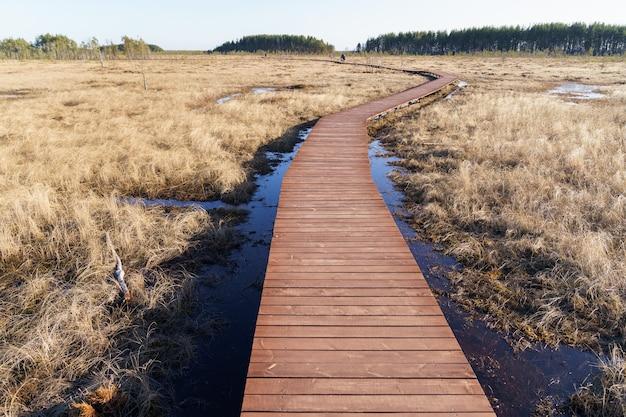 국립 공원 생태 트레일 통로에 목조 산책로의 전경